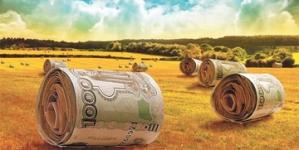 Займ без залога — быстрое пополнение бюджета